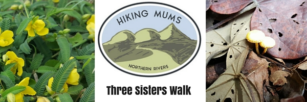 Hiking Mums - Three Sisters Walk, Broken Head