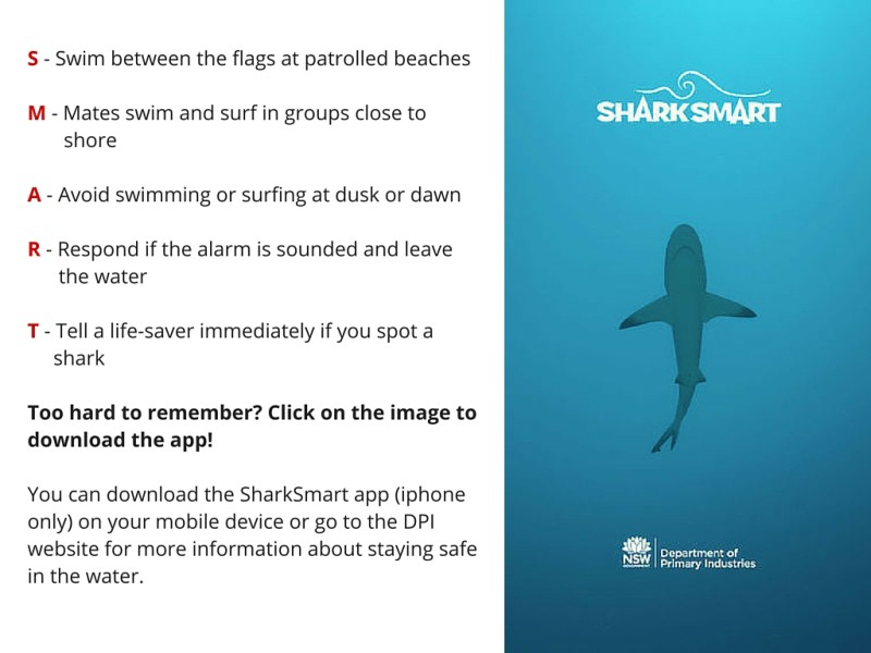 Byron4Kids Shark Smart App Information